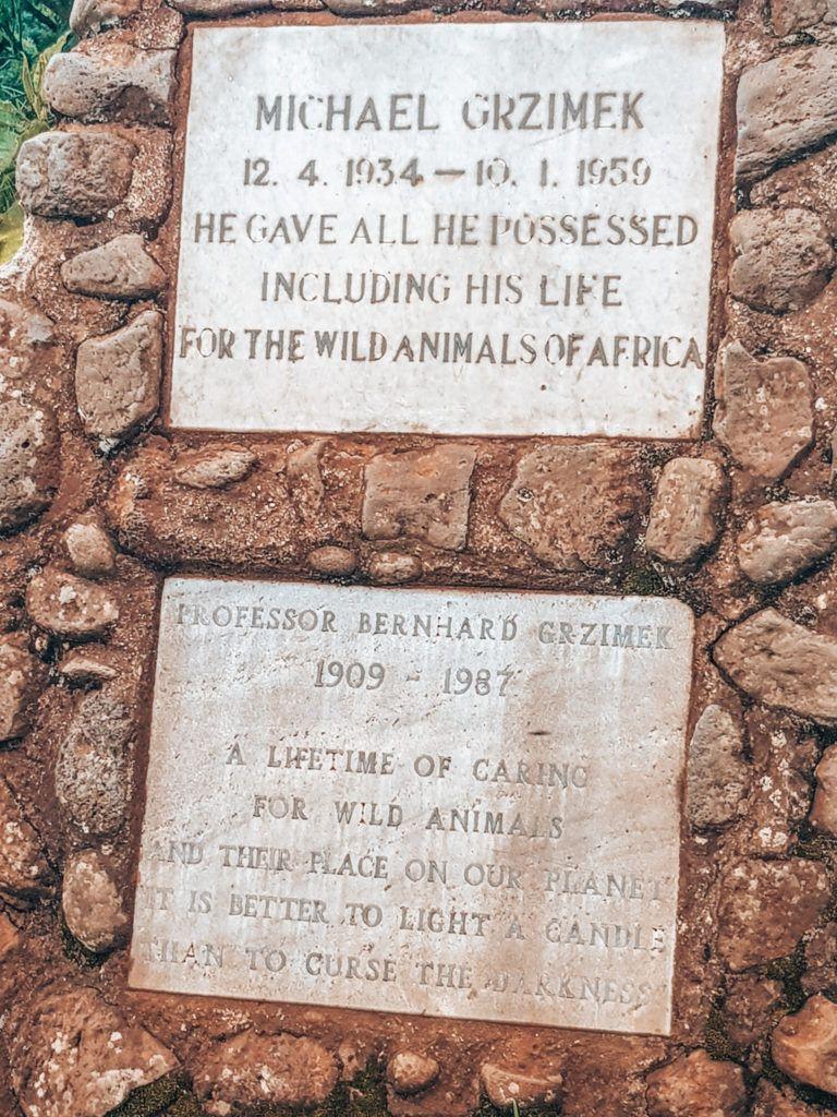 Denkmal Grzimek Serengeti